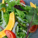 野菜を食べても健康にはなれない?!老けない・痩せる・キレイになる本当の食事とは